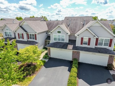 Naperville Condo/Townhouse Contingent: 3028 Crystal Rock Road