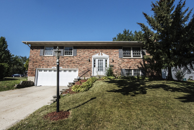 Lisle Single Family Home For Sale: 5910 Dover Drive