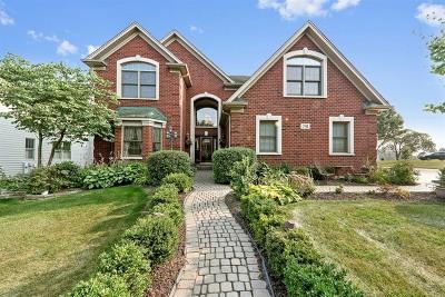Glen Ellyn Single Family Home For Sale: 781 Fairview Avenue