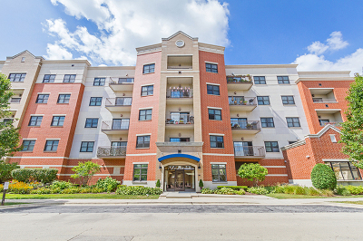 Roselle Condo/Townhouse For Sale: 14 South Prospect Street #211