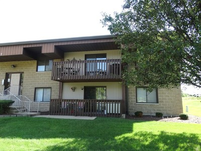 Lockport Condo/Townhouse Price Change: 937 East Division Street #2C