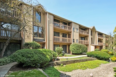Naperville Condo/Townhouse For Sale: 111 Olesen Drive #2G