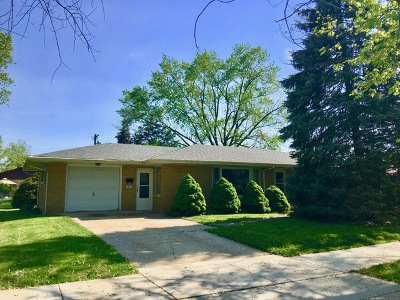 Lockport Single Family Home For Sale: 1053 East 8th Street