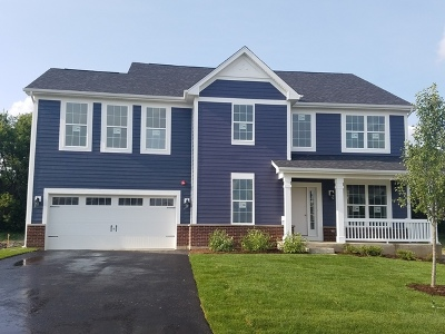 Hoffman Estates Single Family Home For Sale: 3466 Harold Lot#50 Circle