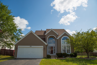Bartlett Single Family Home For Sale: 129 Rushmore Drive
