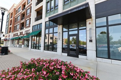 Burr Ridge Condo/Townhouse For Sale: 450 Village Center Drive #316