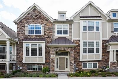 Carol Stream Condo/Townhouse For Sale: 313 Bennett Drive