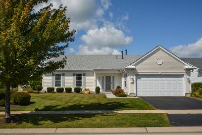Huntley Single Family Home Contingent: 13331 Dakota Fields Drive