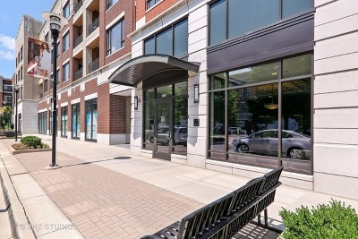 Burr Ridge Condo/Townhouse For Sale: 850 Village Center Drive #412