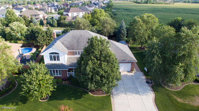 Tinley Park Single Family Home For Sale: 9001 Glenshire Street