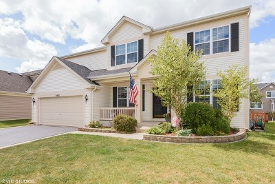 Huntley Single Family Home For Sale: 9401 Welsh Lane