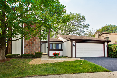 Roselle Single Family Home For Sale: 551 Acadia Trail