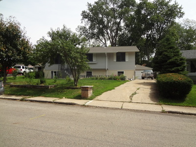 Carpentersville Single Family Home For Sale: 116 Toro Circle