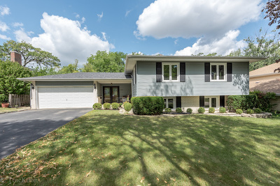 Downers Grove Single Family Home For Sale: 1080 39th Street