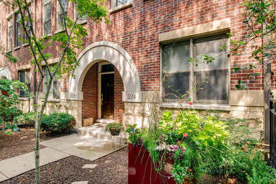 Chicago Condo/Townhouse Contingent: 224 East Cullerton Street