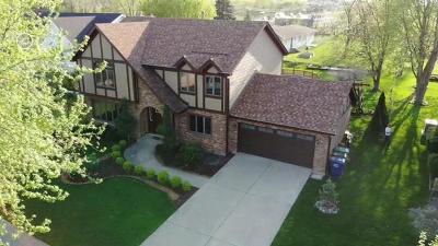Orland Park Single Family Home For Sale: 14216 Mallard Drive