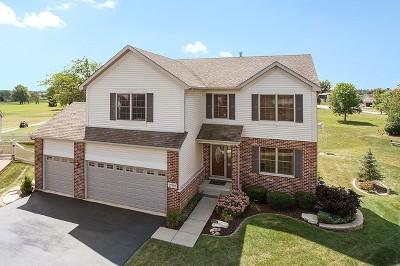 Beecher Single Family Home For Sale: 29980 Blue Heron Boulevard