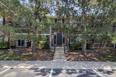 Naperville Condo/Townhouse For Sale: 1332 McDowell Road #101