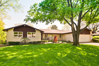 Mount Prospect Single Family Home For Sale: 1011 West Lincoln Street