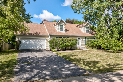 Naperville Single Family Home For Sale: 6s024 Country Glen Drive
