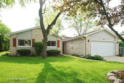Schaumburg Single Family Home For Sale: 509 Dogwood Court