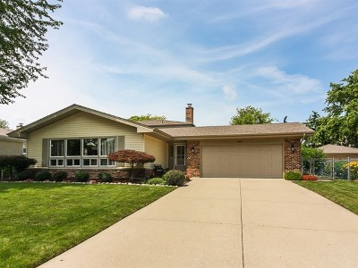 Schaumburg Single Family Home For Sale: 308 Gareth Lane
