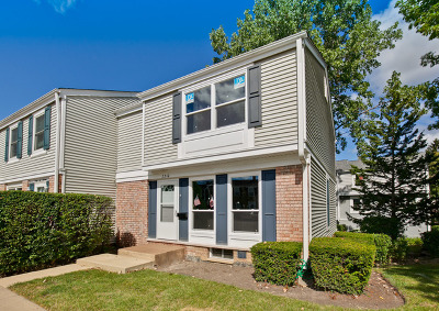 Hoffman Estates Condo/Townhouse For Sale: 2210 Stratham Place