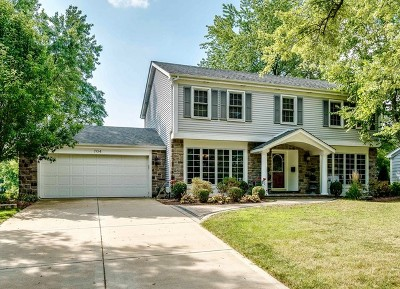Naperville Single Family Home For Sale: 704 West Bauer Road