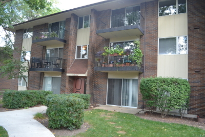 Naperville Condo/Townhouse For Sale: 5s066 Pebblewood Lane #A7