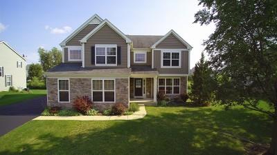 Aurora Single Family Home For Sale: 3282 Homestead Avenue