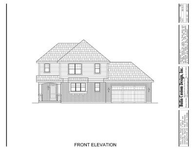 Homer Glen Single Family Home For Sale: 14653 Kildare Street