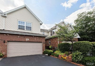 Bolingbrook Condo/Townhouse For Sale: 543 Goodwin Drive