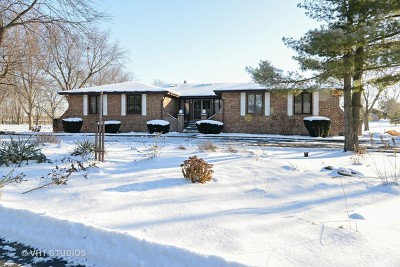 Frankfort Single Family Home For Sale: 22917 South Scheer Road