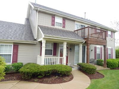 Carpentersville Condo/Townhouse Contingent: 7425 Grandview Court #7425