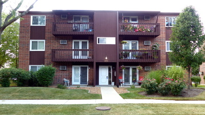 Roselle Condo/Townhouse Contingent: 672 Daisy Lane #212