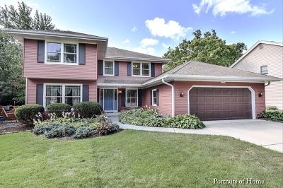 Lisle Single Family Home For Sale: 2159 Oak Hill Drive