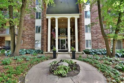Downers Grove Condo/Townhouse For Sale: 4900 Forest Avenue #201