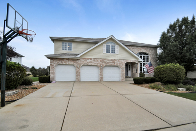 Frankfort Single Family Home For Sale: 21372 Georgetown Road