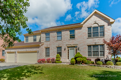 Schaumburg Single Family Home For Sale: 816 Seers Drive