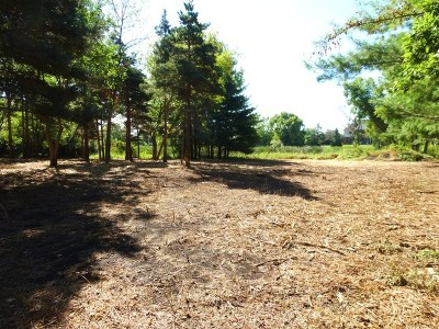 Residential Lots & Land For Sale: 14 East Penny Road