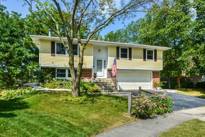 Hoffman Estates Single Family Home Contingent: 1940 Driftwood Court