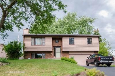 Cary Single Family Home For Sale: 360 Ann Street