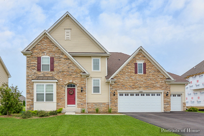 Elburn Single Family Home For Sale: 1355 Spalding Avenue