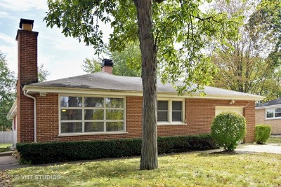 Roselle Single Family Home For Sale: 719 Spring Street