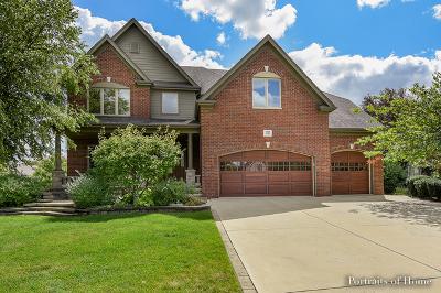 Naperville Single Family Home For Sale: 3312 Danlaur Court