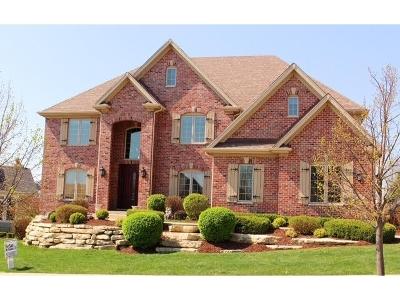 Elgin Single Family Home For Sale: 3687 Heathmoor Drive