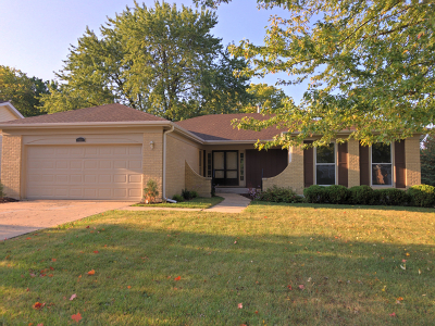 Lisle Single Family Home For Sale: 2839 Sun Valley Road