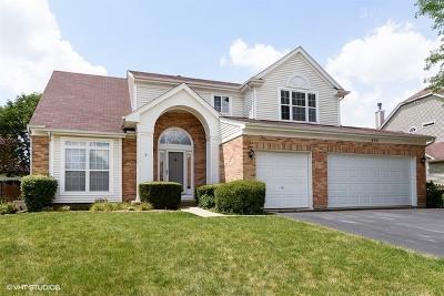 Schaumburg Single Family Home Price Change: 490 Cherry Hill Court
