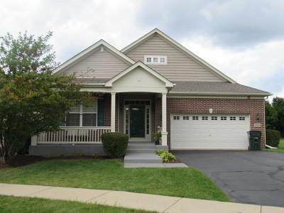 Hoffman Estates Single Family Home For Sale: 5924 Eton Drive