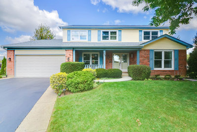 Schaumburg Single Family Home Contingent: 464 Derby Court